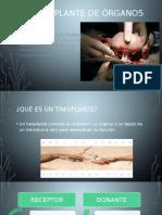Trasplante de Organos Marzo 2016