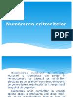 1. Numărarea eritrocitelor