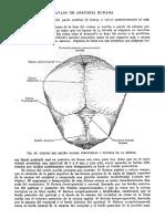 Tratado de Anatomia Humana Quiroz Tomo I_104
