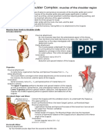 Kinesiology of Shoulder Complex