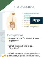 APARATO DIGESTIVO (anatomía, fisiología de la digestión, patologías...)