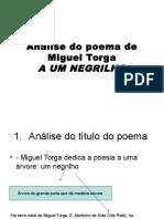 A Um Negri Lho de Miguel Torga