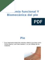 Anatomia Funcional Del Pie