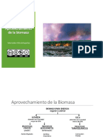 TLYA Biomasa-Aprovechamiento