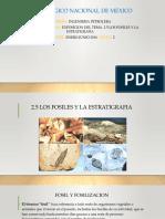 Fosiles y Estratigrafia