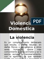 Ley de Violencia de Genero en PR
