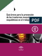 Guía Breve prevención TMERT