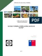 Anexo 5 Plan Pueblos Indigenas Carahue Puerto Saavedra MOFIM