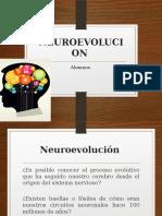 Neuro Evolucion