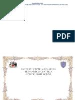 Diploma Word