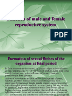 Function of Male and Female Reproductive System