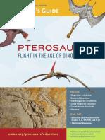 Pterosaurs_edguide