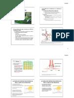 4.Traducción%20y%20Codigo%20Genético[1].pdf