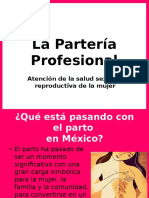 Partería Profesional