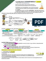 Andytonini 09-Produzione Di Bioetanolo-Vers 2