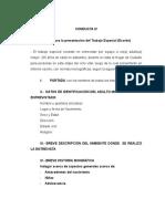 Pautas Para El Trabajo Especial Conducta IV