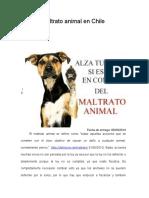 ensayo Maltrato Animal en Chile