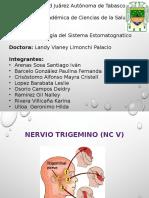 Nervio Trigemino (NC v)