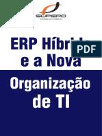 ERP Híbrido e a Nova Organização Da TI