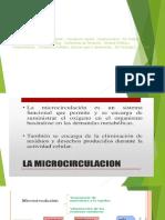 Seminario Nro. 3. Microcirculacion