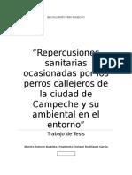 Repercusiones Sanitarias Ocasionadas Por Los Perros Callejeros de La Ciudad de Campeche y Su Ambiental en El Entorno (1)