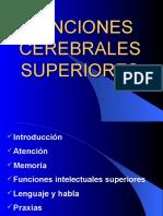 Funciones Cerebrales Superiores 1 (5)