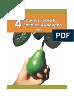 Aguacate Ayacucho Peru