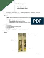 Instructivo de Laboratorio MRU_revisión Juaqui