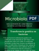 microbiologia presentación power point
