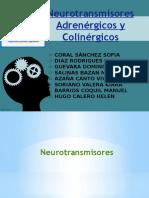 Neurotransmisores Adrenergico y Colinergicos