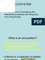 ecosystem final.ppt