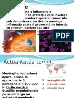 255289066-Meningita.ppt