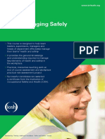 IOSH Managing Safely Factsheet Low Res-1