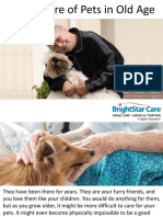 Taking Care of Pets in Old Age