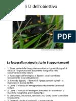 Al Di Là Dell'Obiettivo - Fotografia Naturalistica1