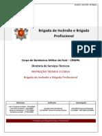 It 17 Brigada de Incendio e Brigada Profissional
