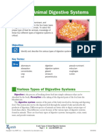 types of animal digestive systems
