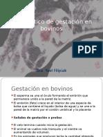 18diagnsticodegestacinenbovinos-141002101830-phpapp01