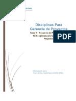 Resumen de Las 10 Disciplinas