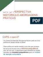 02- CAPS- Perspectiva Histórica e Abordagens Práticas