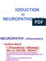 introduction to neuropathology