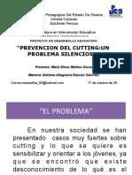 Prevencion Cutting