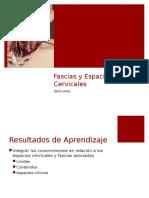 16.-Fascias y Espacios Cervicales