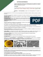 Nutrición Microbiana[