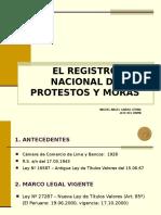 Registro Nacional de Protestos 2009_m a Garro