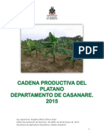 Documento Linea Base Platano 2015