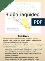 P0001 File Bulbo Raquídeo