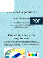 Soluciones Reguladoras_presentacion Previa
