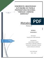 Modulo 6Metabolismo Bioquimica