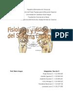 Fisiologia y FsiopatologiaENDOCRINO (1)